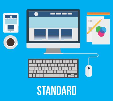 web-standard1